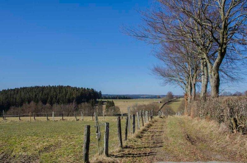 Monschau - Höfen - Rur - Perlenbachtalsperre_0870