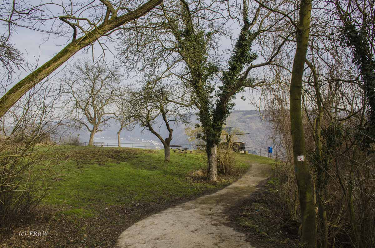 Aussichtspunkt vom Rheinburgenweg - Zwischen Burg Rheinfels und Günderodehaus