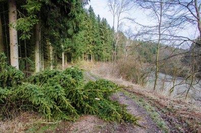 Eifelrunde_NAE-Nöthen_0062