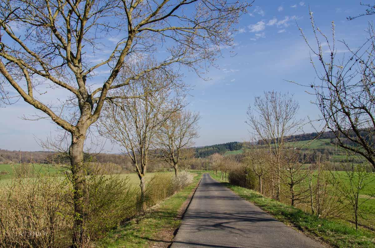 Hachenburg_Tal der Nister 026