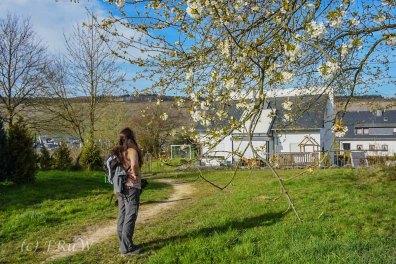 Mehringer Schweiz_Tag 1 (265)