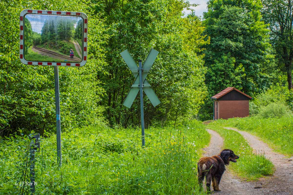Urlaub Harz 2015_0152