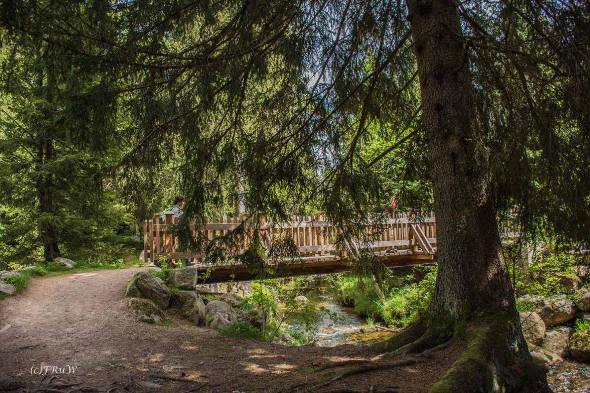 Urlaub Harz 2015_0422
