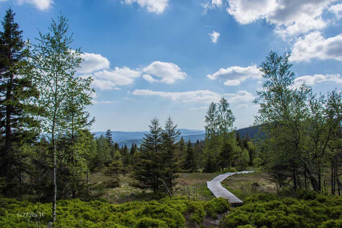 Urlaub Harz 2015_0459
