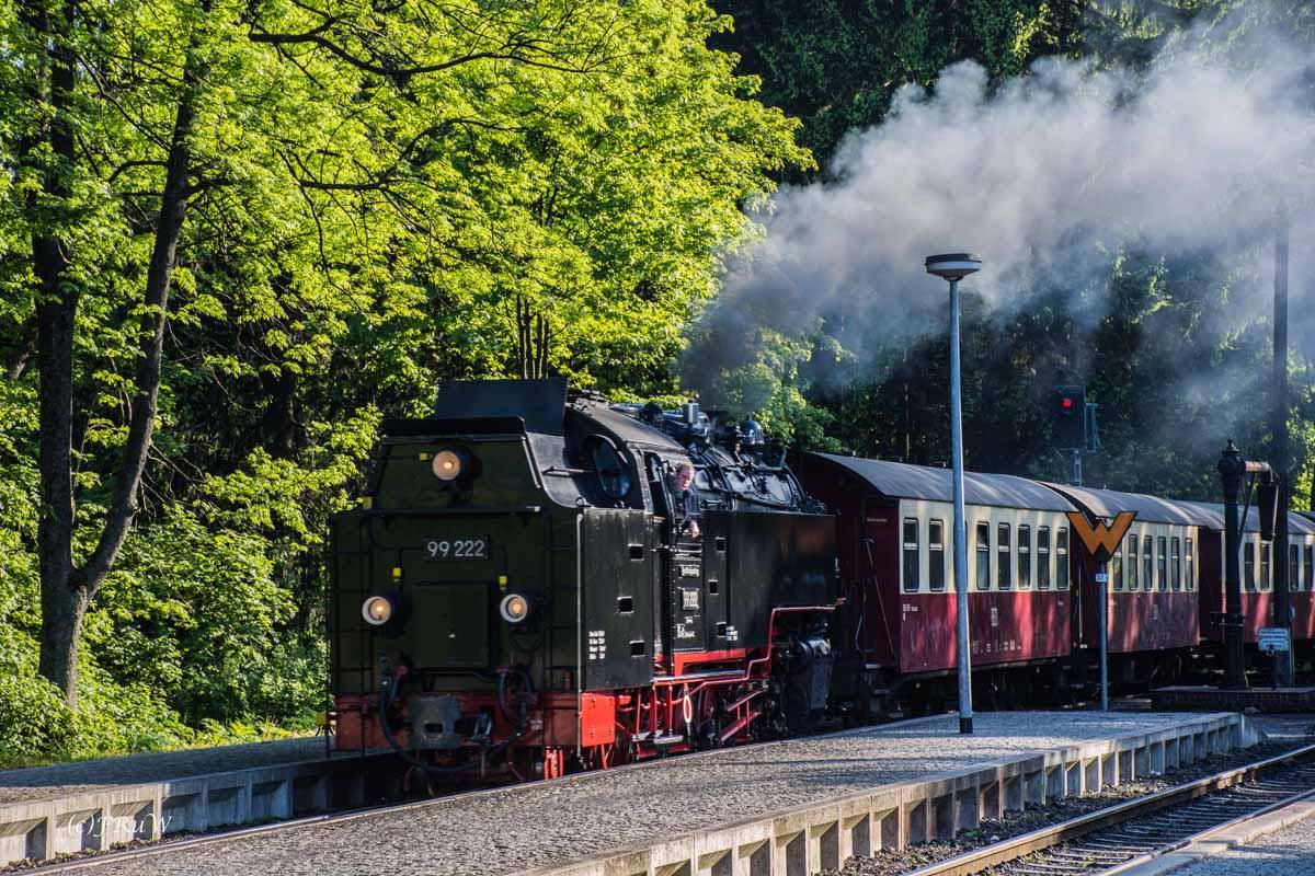 Urlaub Harz 2015_0523
