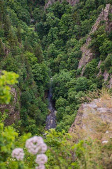 Urlaub Harz 2015_0624