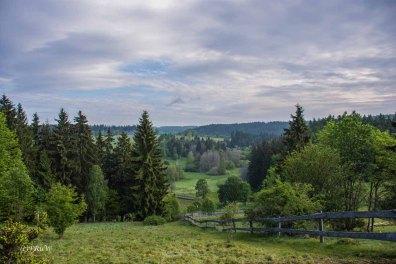 Urlaub Harz 2015_0701