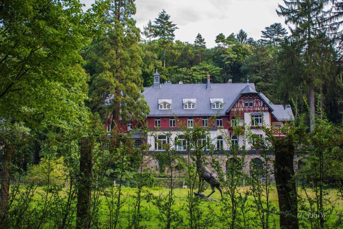 Anwesen im Remagener Wald - Apollinarisschleife mit Erweiterung