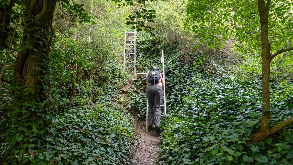 Erdener Treppchen (57)