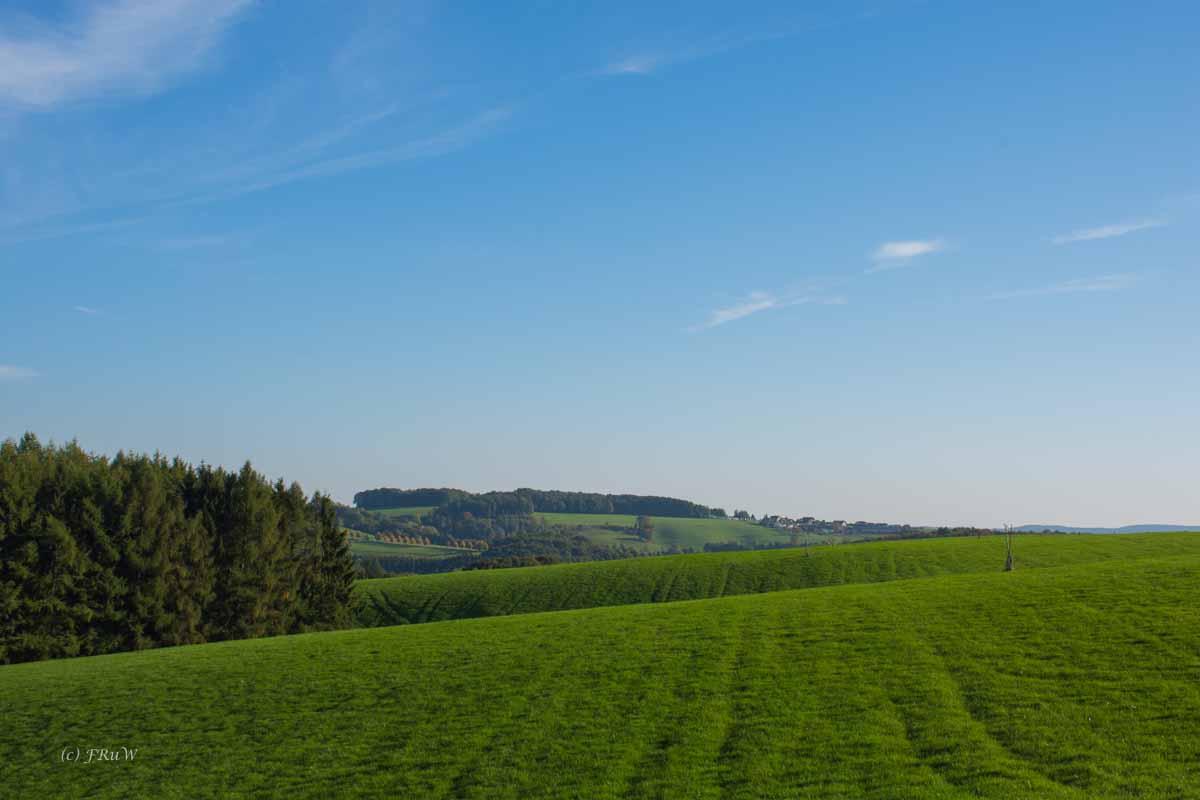So herrliche grüne Wiesen