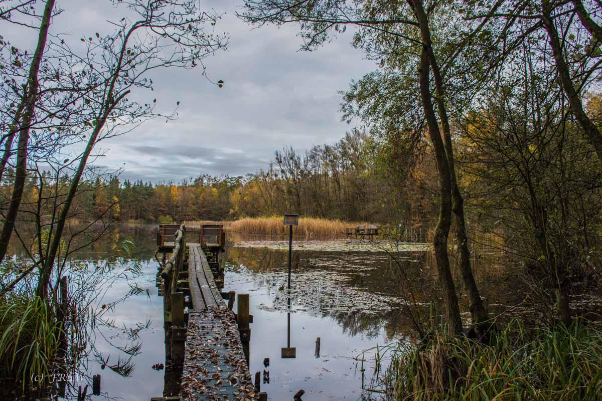 Brühler Seen (17)