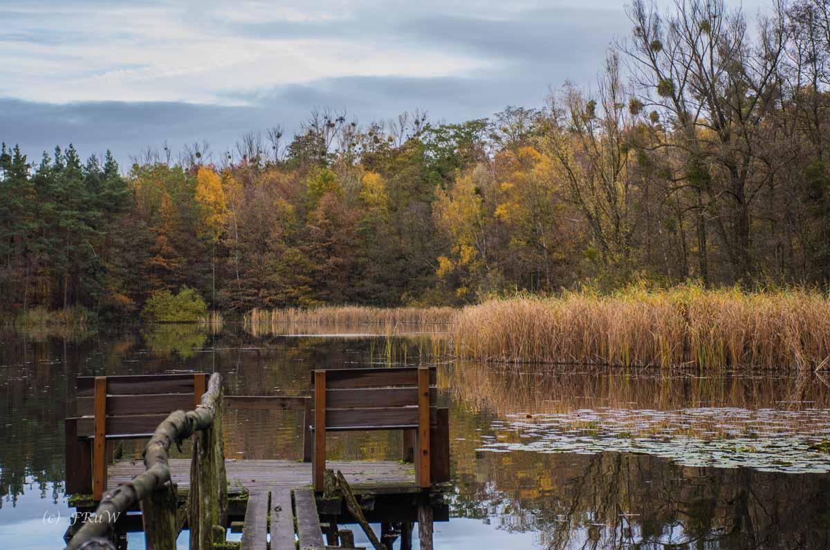 Brühler Seen (22)