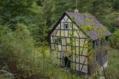 Oberes Baybachtal (108)