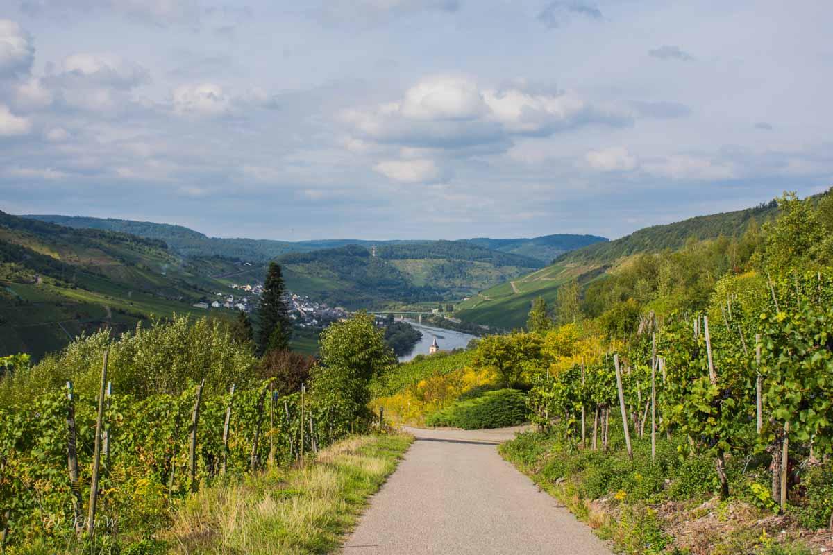 TrabenTrarbach_Reil (245)