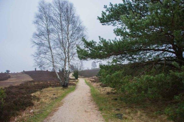 Sellhorn_Totengrund (135)