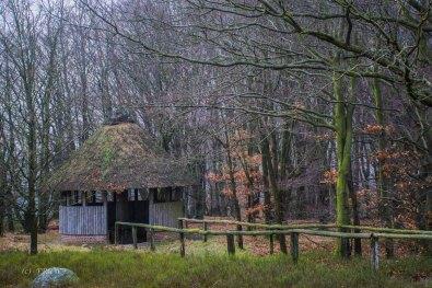 Sellhorn_Totengrund (146)