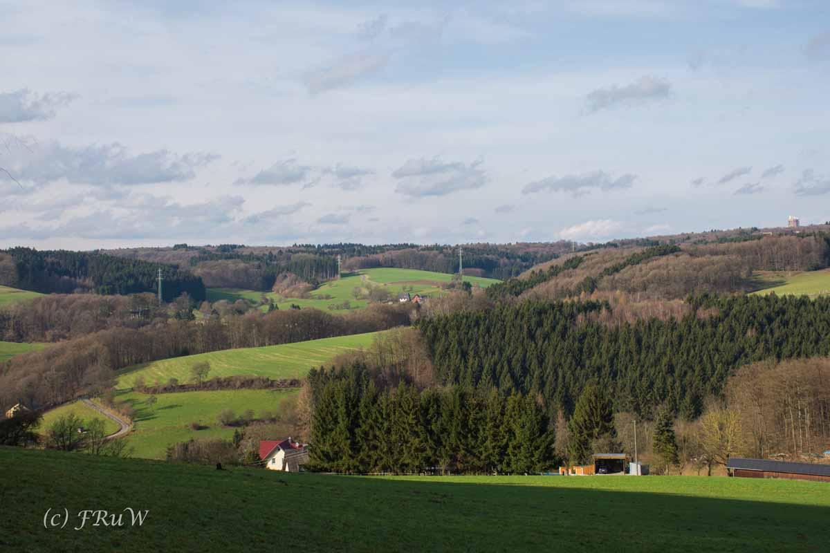 Waldmythenweg (204)