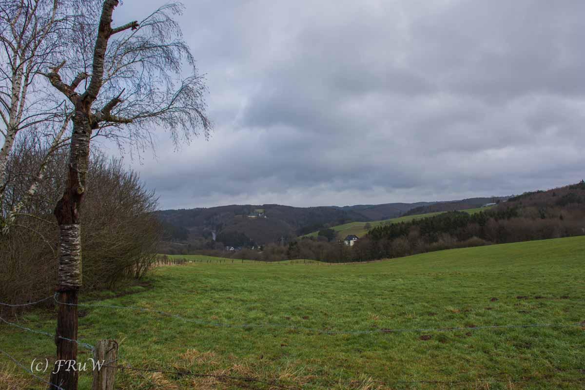 Wanderung Wildenburg_Reifferscheid (41)