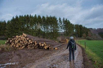 Wanderung Wildenburg_Reifferscheid (59)