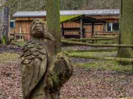 Wildpark_HoehenfelderSee_DellbrueckerHeide (46)