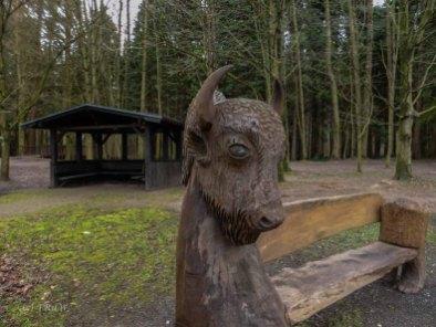 Wildpark_HoehenfelderSee_DellbrueckerHeide (48)