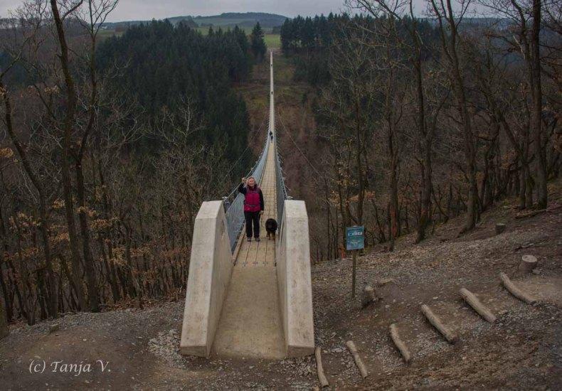 Moersdorf_Geierlay-Hängeseilbruecke (28)