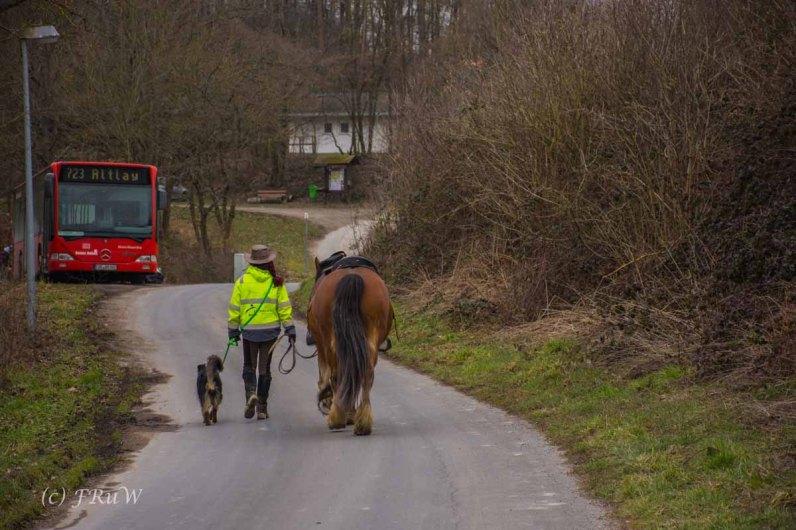 Traumschleife_Altlayer Schweiz (107)