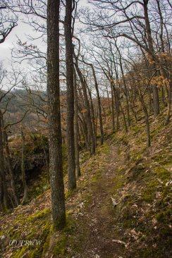 Traumschleife_Altlayer Schweiz (22)