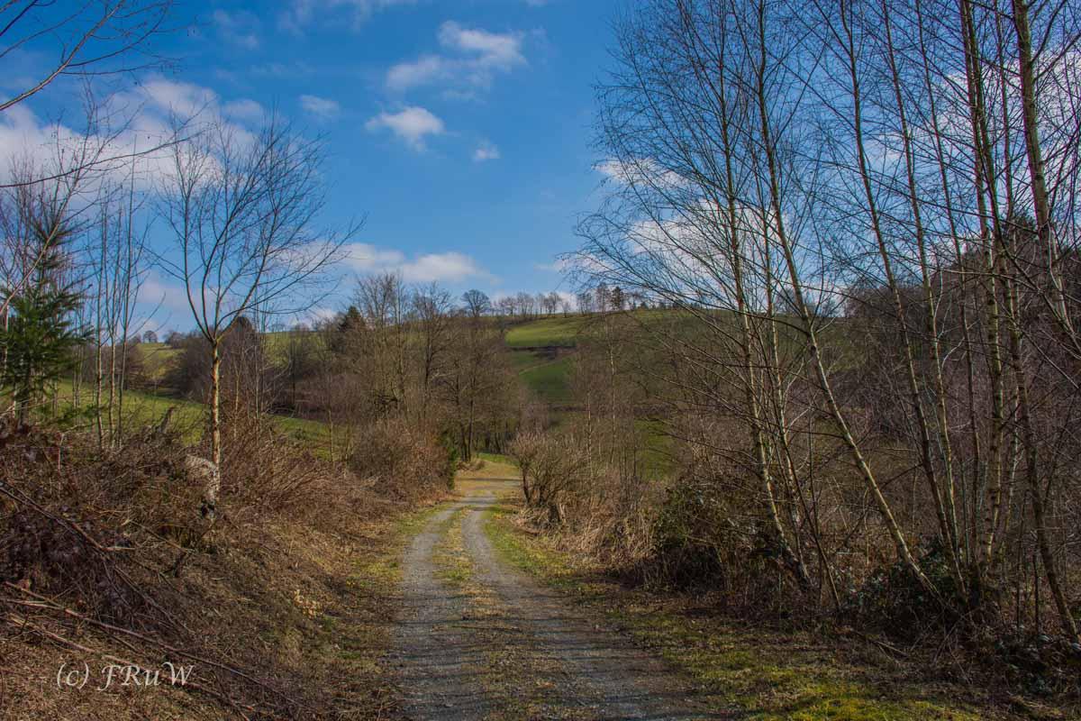 Wildenburger Land (129)