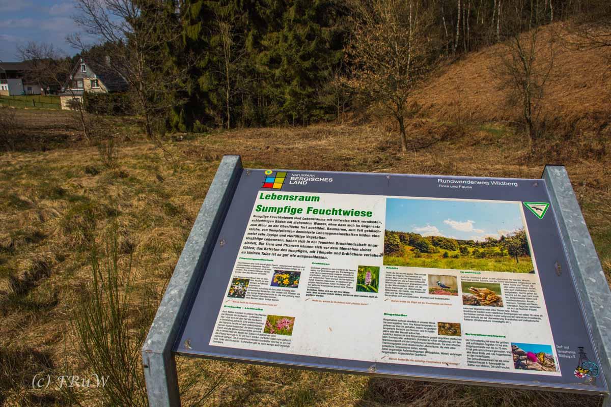 Wildenburger Land (146)