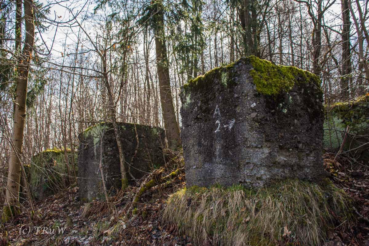 Wildenburger Land (164)