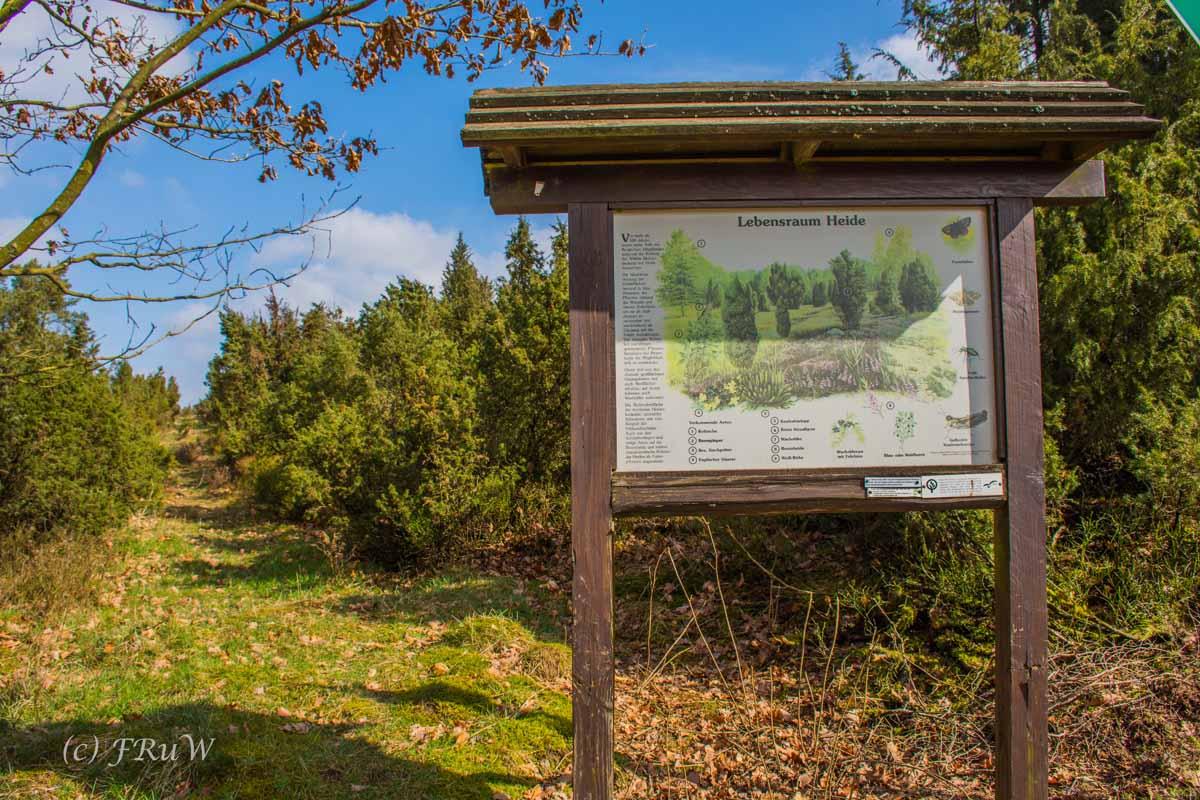 Wildenburger Land (17)