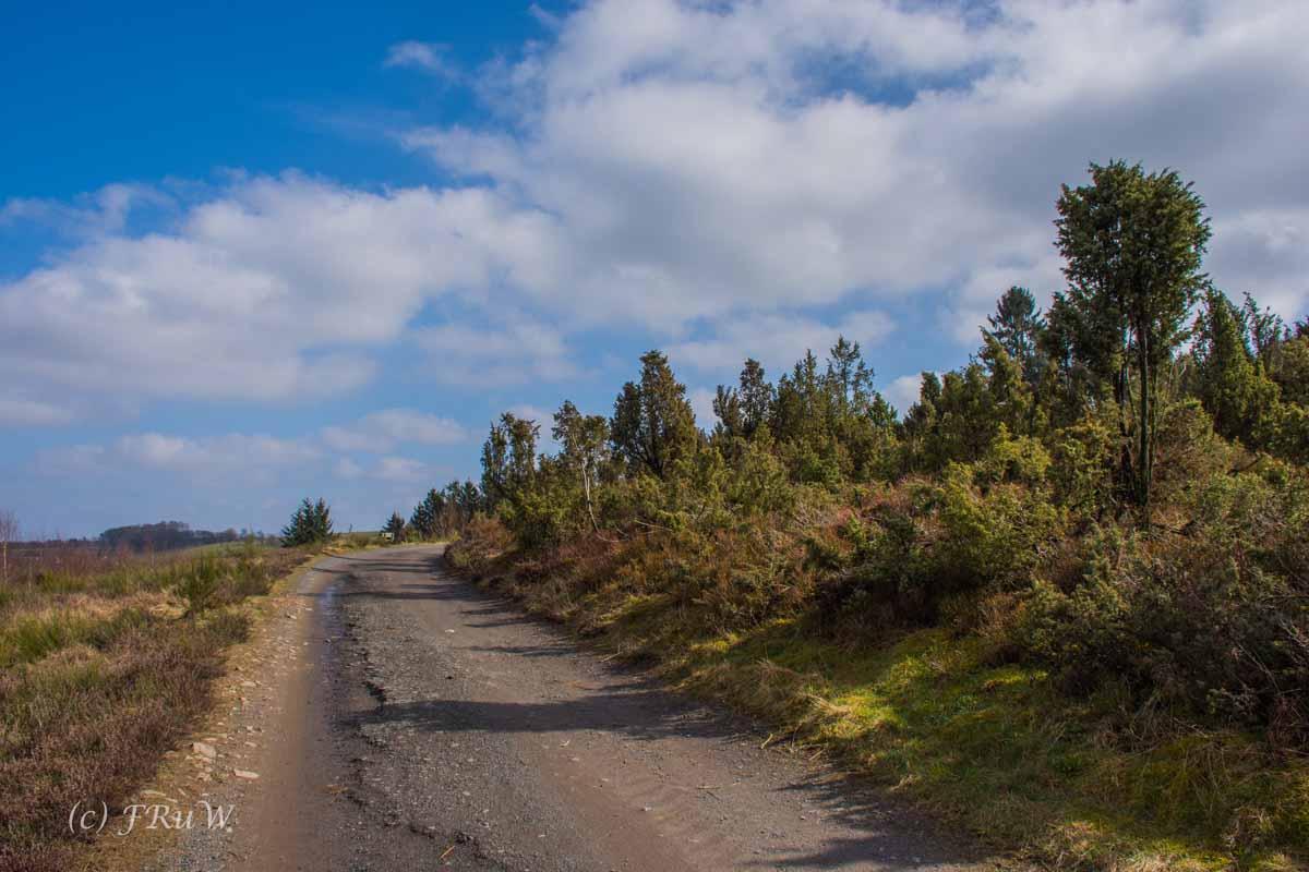 Wildenburger Land (20)