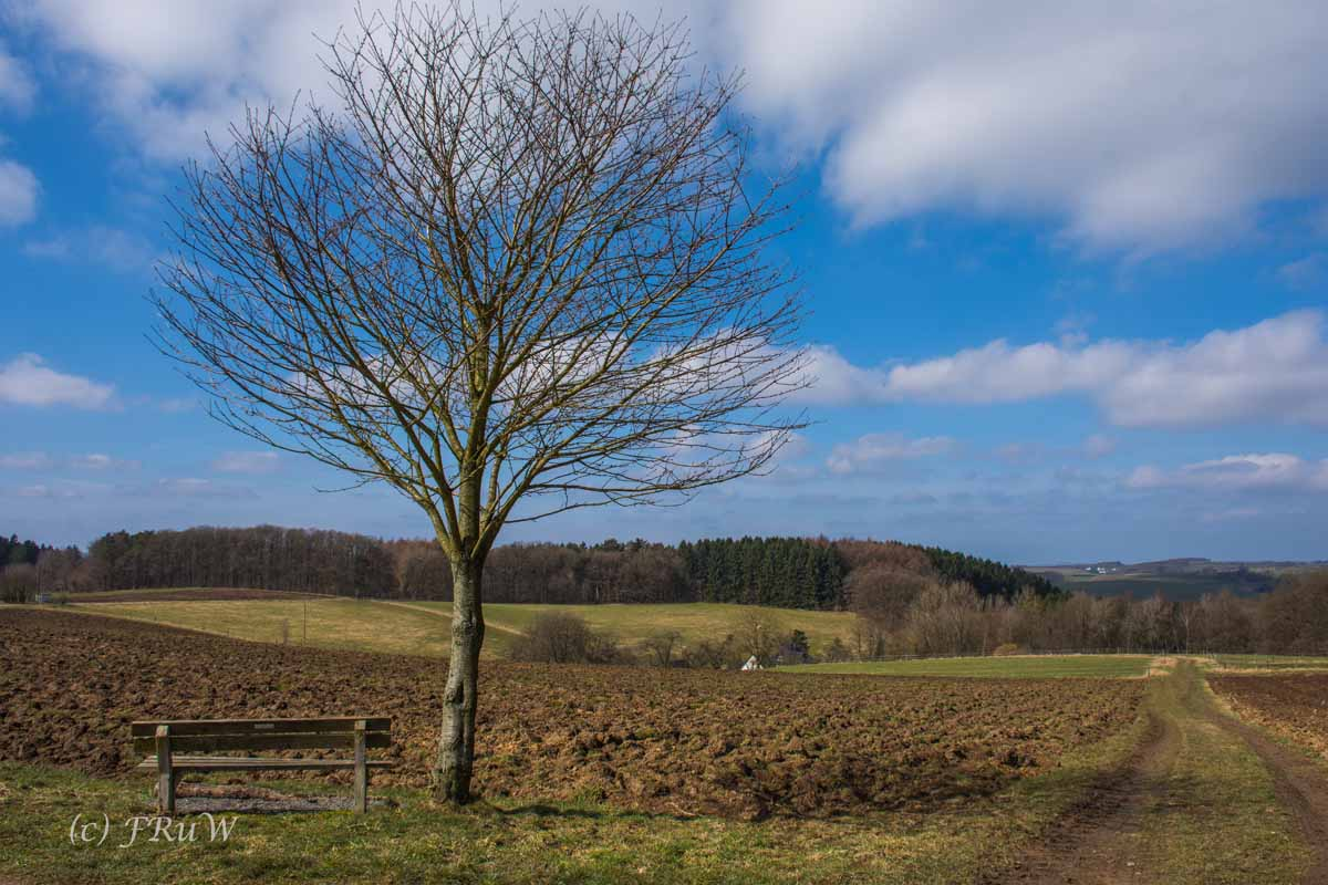 Wildenburger Land (73)