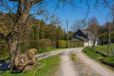 Suelzbahnsteig (133)