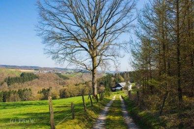 Suelzbahnsteig (37)