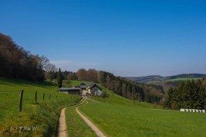 Suelzbahnsteig (50)