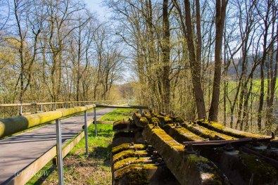 Suelzbahnsteig (96)