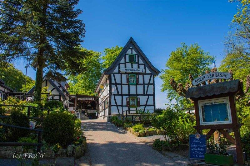 Drachenburg (118)