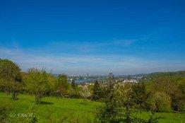 Drachenburg (23)