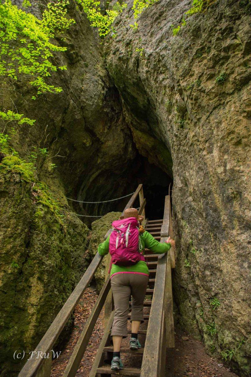 Gerolsteiner Felsenweg (109)