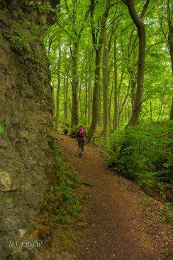 Gerolsteiner Felsenweg (124)