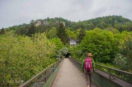 Gerolsteiner Felsenweg (19)