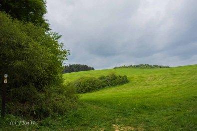Gerolsteiner Felsenweg (33)