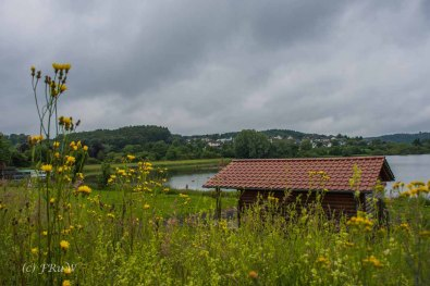 BesenwagenBloggerwandernWesterwald (134)