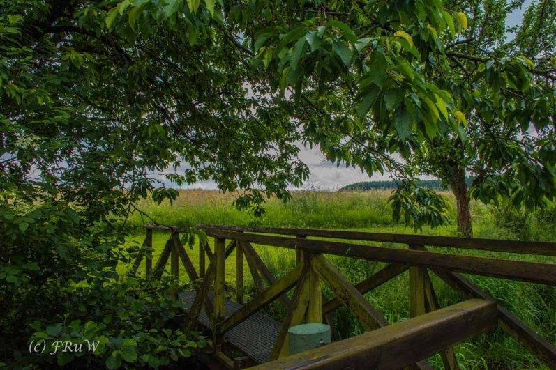 BesenwagenBloggerwandernWesterwald (211)