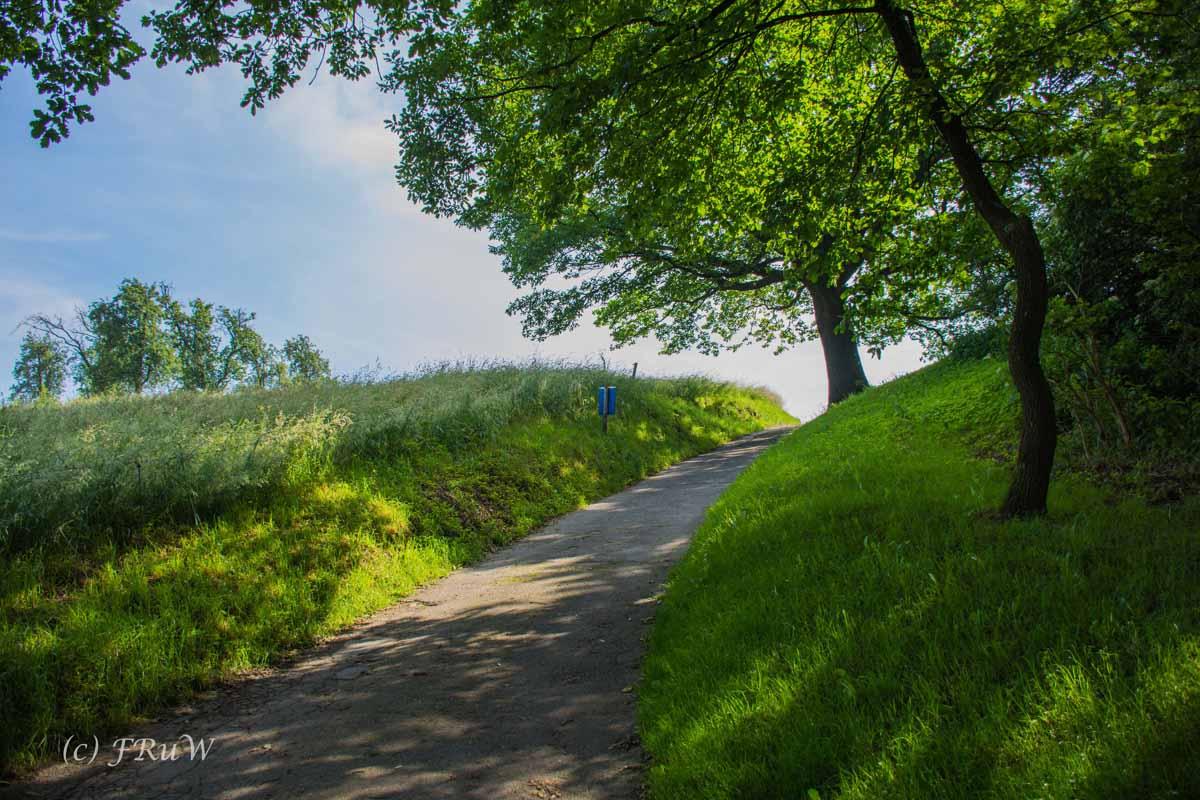 ObstwegSolingen (106)