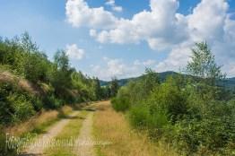 BergischerStreifzugBaumweg (114)