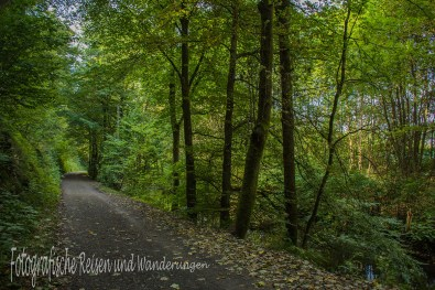 BergischerStreifzugBaumweg (22)