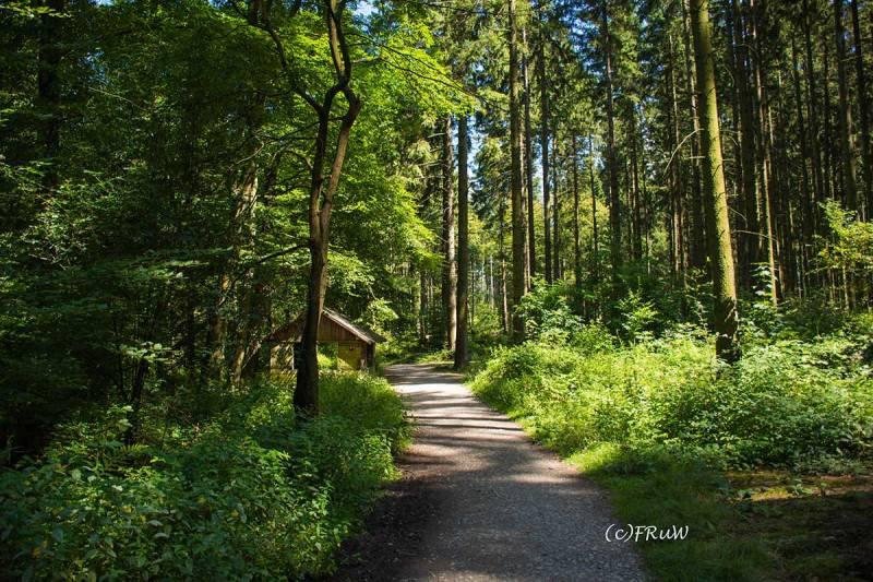 BergischerStreifzugFuhrmannsweg-(123)